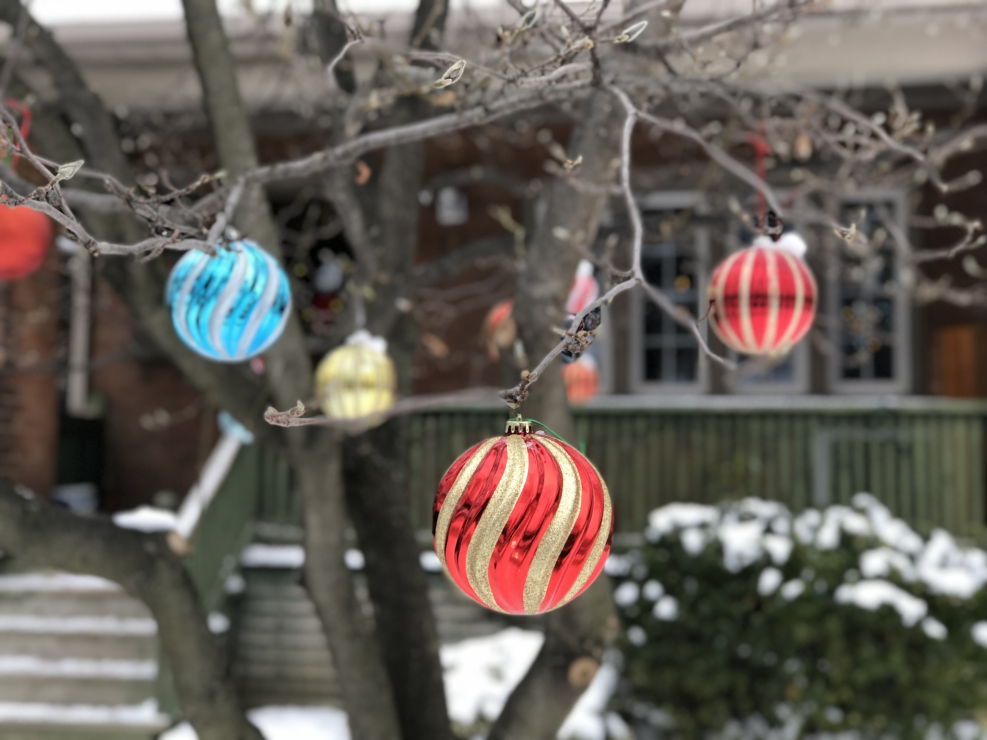 Outdoor Christmas ornaments - Josh Kern photography